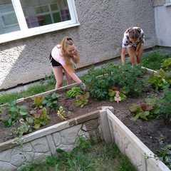 Galeria Nasz ogródek