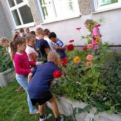 Galeria Szkolny ogródek