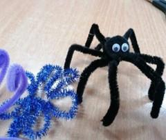 Czarny pająk z dużymi oczami.