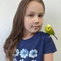 Oliwia i papuga Alex
