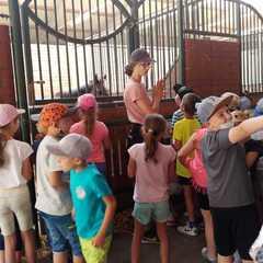 Uczniowie poznają pracę stajennego i opiekę nad końmi.