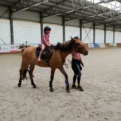 Kalina na koniu