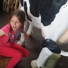 Galeria Wizyta w gospodarstwie agroturystycznym